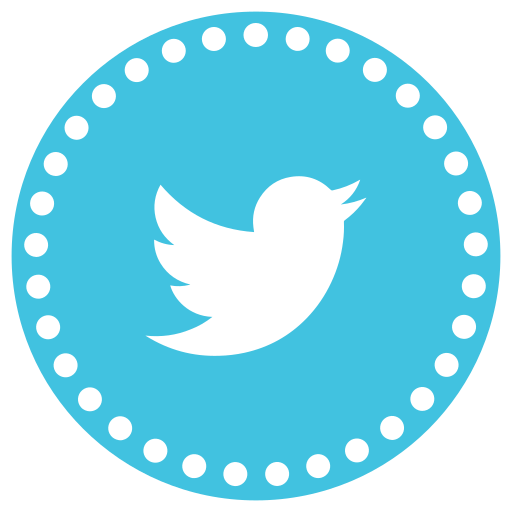 communication, connection, media, network, social, social media, twitter icon