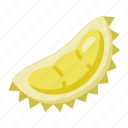 local, durian, fruit icon