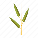 bamboo, botany, leaf, nature, plant, tree icon