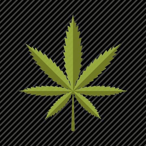 botany, drug, leaf, marijuana, nature, plant, tree icon