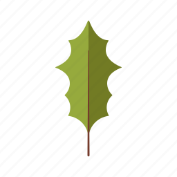 botany, holly, leaf, nature, plant, tree icon