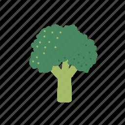 broccoli, cabbage, food, vegetable icon
