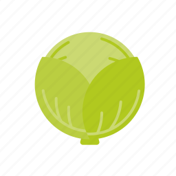 cabbage, food, vegetable, white icon