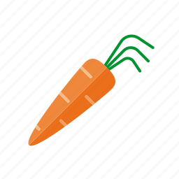 carrot, food, freshness, healthy eating, vegetable icon