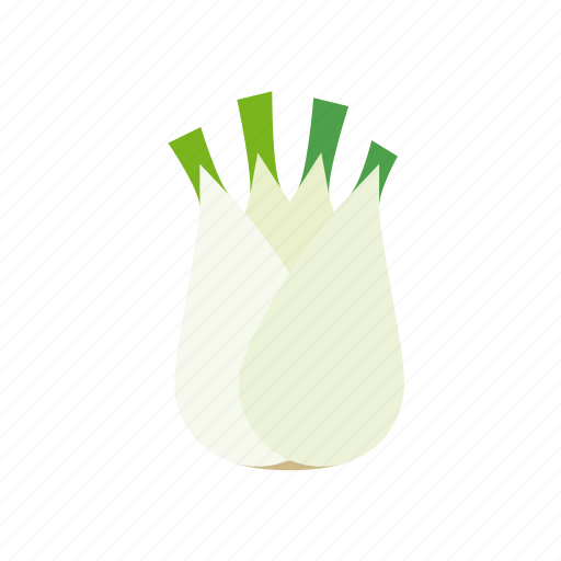 fennel, food, freshness, groceries, healthy eating, vegetable icon