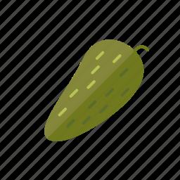 food, gherkin, pickle, vegetable icon