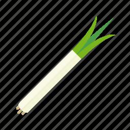food, leek, spring onion, vegetable icon