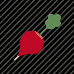 food, radish, red, vegetable icon