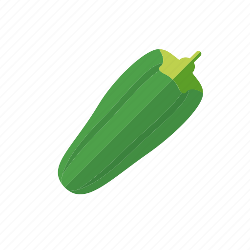 food, gourd, vegetable, zucchini icon