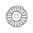 bloom, daisy, floral, flower, garden, gerber daisy, plant icon