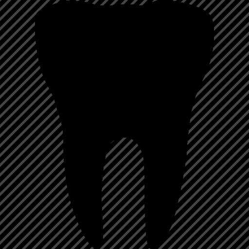 dental, dentist, health, medical, molar, teeth, tooth icon