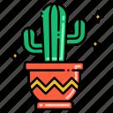 cactus, decoration, plant