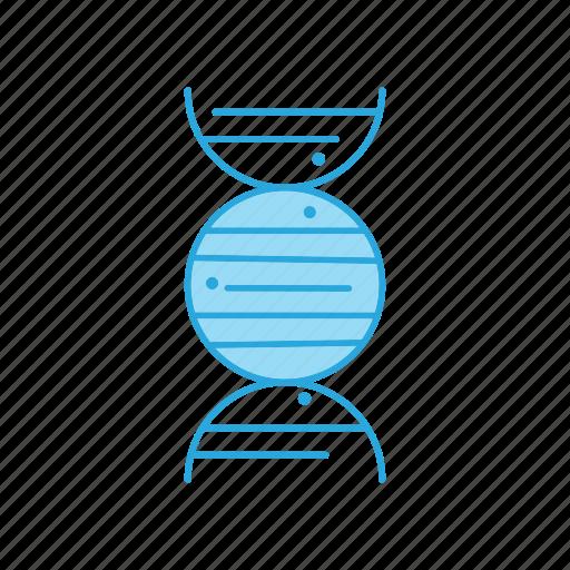 Dna, genes, genetic icon - Download on Iconfinder