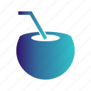 coconut, water icon