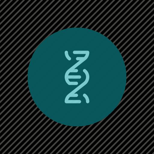 Dna, double, gene, genetic, genetics, helix, strand icon - Download on Iconfinder