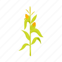 corn, food, leaves, plant, stem, swing, vegetable icon