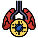 bacteria, lungs, respiration, respiratory, system, virus icon