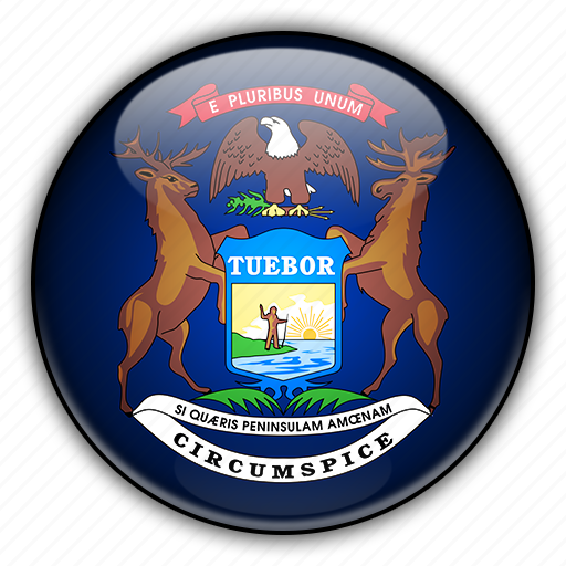 america, michigan, north, states, united icon