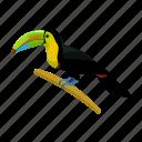 bird, mexico, sightseeing, toucan, travel icon