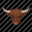 bull, country, head, landmark, national, scotland, travel