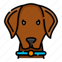 animal, dog, pet, police, puppy, security, sniffer icon