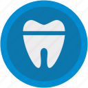care, dental, dentist, health, hospital, stomatology, tooth icon