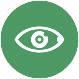 care, eye, preview, right, search, view, vision icon