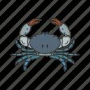 animal, blue crab, chesapeake blue crab, crab, invertebrate, sea creature, seafood icon