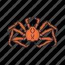 alaskan king crab, crab, crustacean, invertebrate, king crab, sea creature, seafood icon