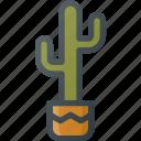 cactus, civilization, community, culture, mexican, nation, plant icon