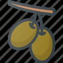 civilization, communities, community, culture, nation, olives icon