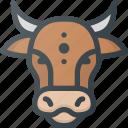animal, cow, community, nation, culture, civilization, saint