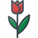 civilization, communities, community, culture, dutch, nation, tulip