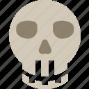 custom, skull icon