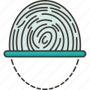 biometric, fingerprint, scan, identity, verification