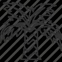palm, tree, beach, tropical, resort