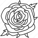 rose, flower, blossom, flora, nature