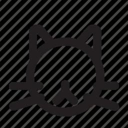 cat, feline, fur, kitty, meow, purr icon