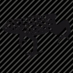 dart, frog, jungle, rana icon