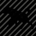 hiena, hyena icon