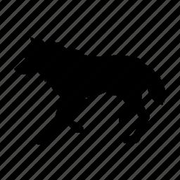 lobo, wolf icon