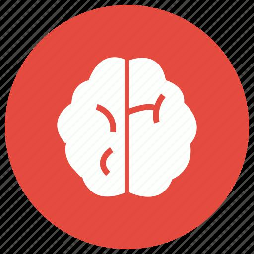brain, brainstorming, creative, mind icon