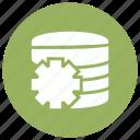 cog, database, server, setting
