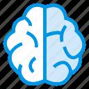 brain, brainstorming, creative, mind