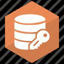 data, database, key, server, storage