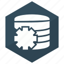 cog, database, server, setting icon
