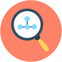 graphic, infographics, magnifier, search chart, search graph icon