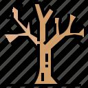 dead, death, plant, tree