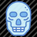 anatomy, bone, dead, death, skull