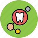 body part, dental, human tooth, molar, tooth icon